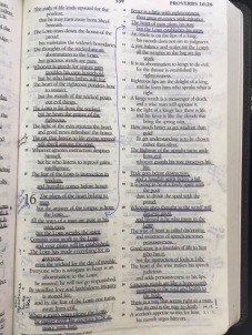 Beth's bible
